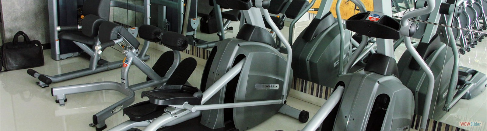 ELLIPTICAL/ CROSS TRAINER